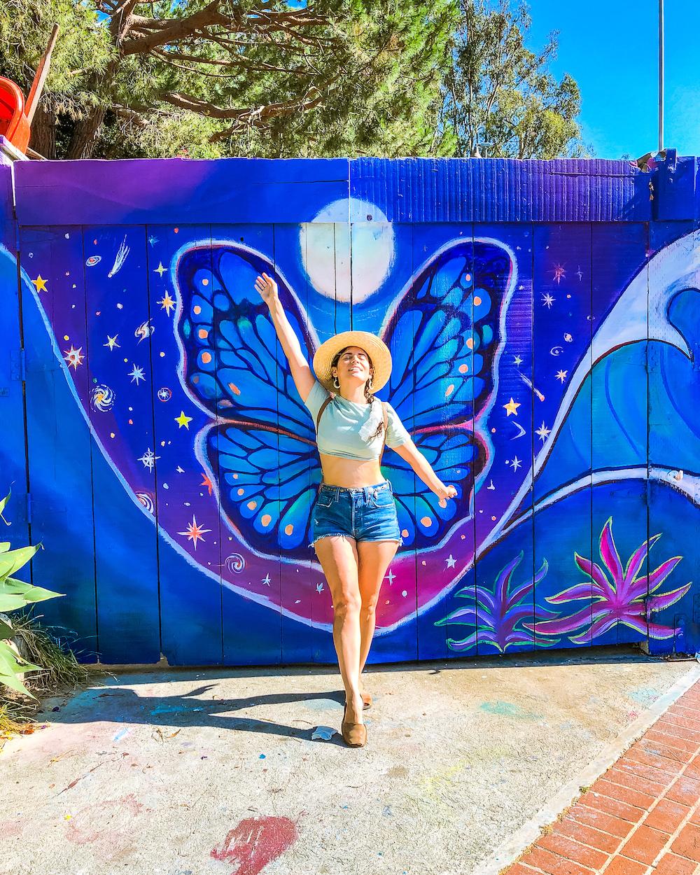 laguna canyon butterfly mural laguna beach