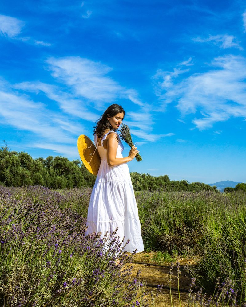 woman in white dress Lavender Fields in Southern California