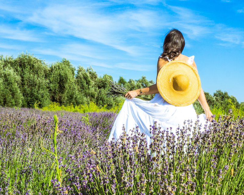 woman in white dress straw hat lavender fields