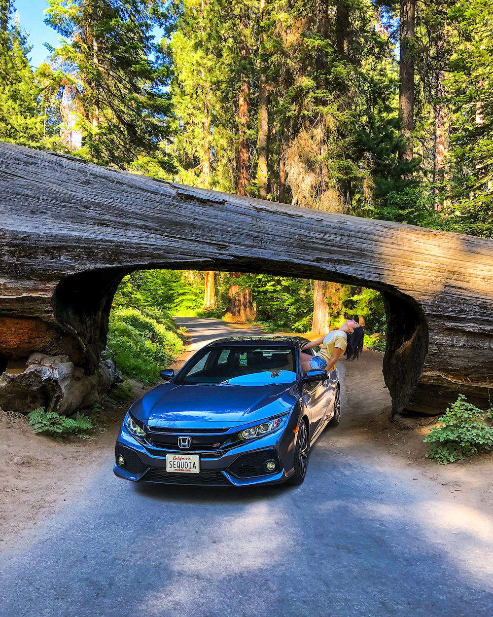 woman hanging out of car at tunnel log sequoia