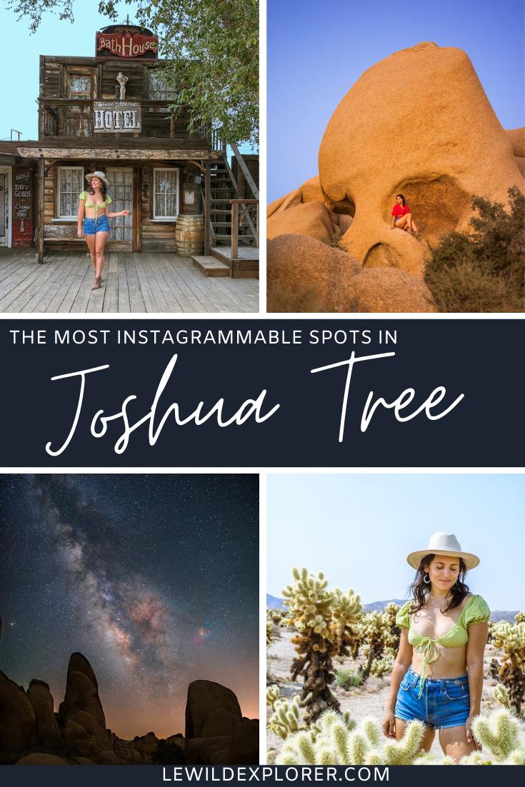 best joshua tree photo spots