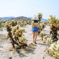 best photo spots joshua tree woman at cholla cactus garden