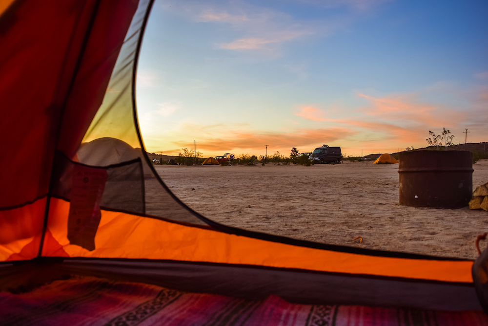 The Ultimate Joshua Tree Guide | Things to Do in Joshua ...