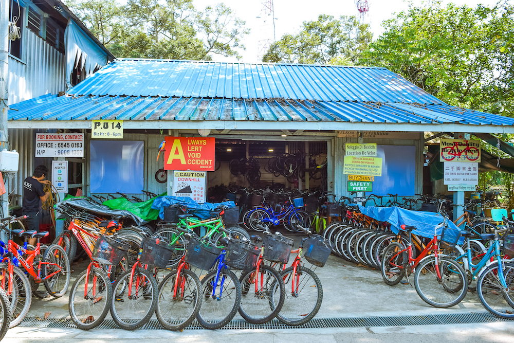 bicycle rental in singapore