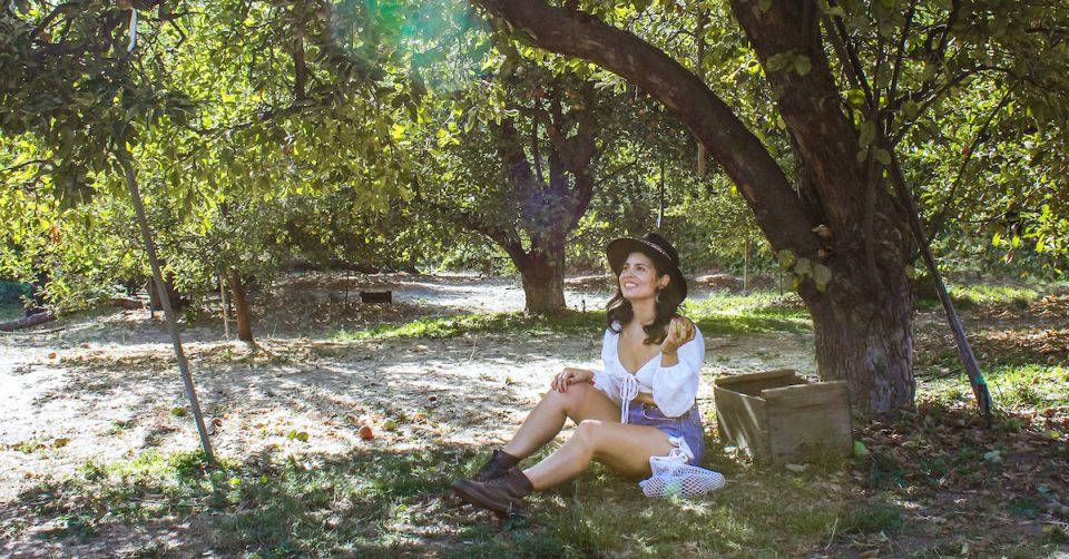 oak glen apple picking woman sitting under tree at orchard