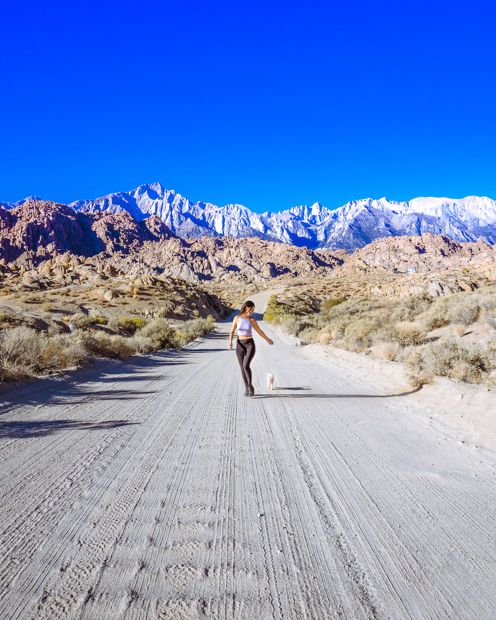 woman and dog outdoors on dirt road with mountains in background