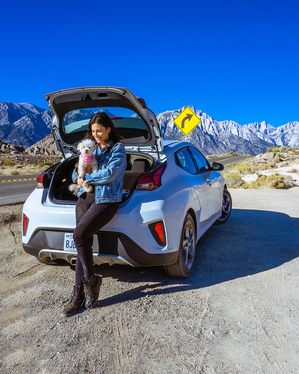 woman and dog parked on side of road with snow capped mountains in background