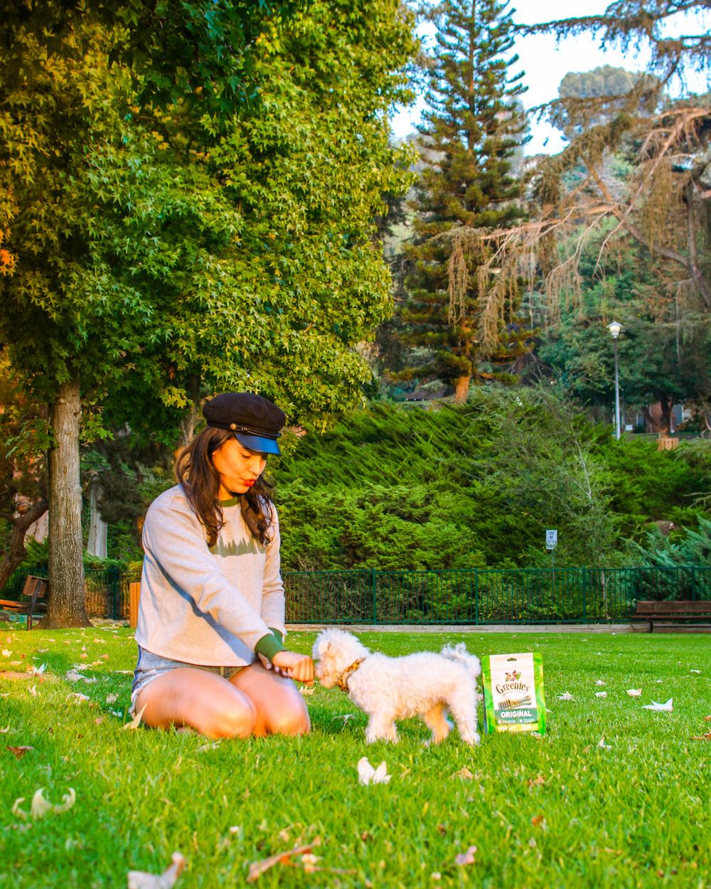 woman giving treats to dog at park