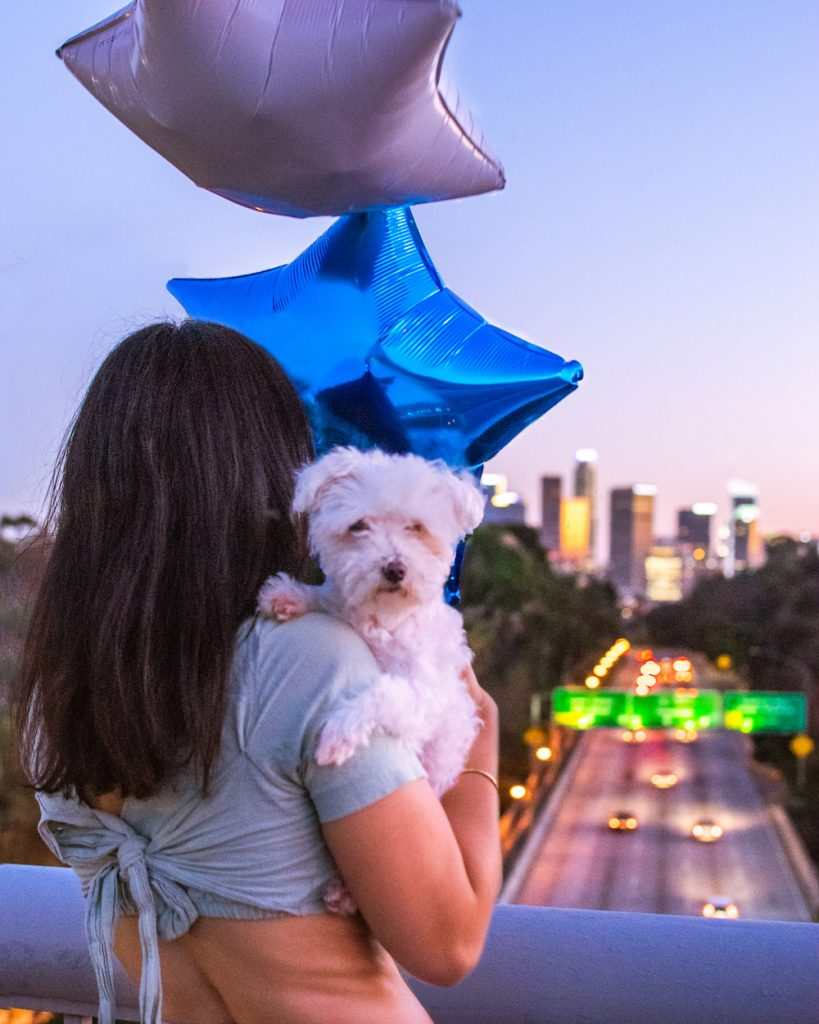 woman and small white maltese dog at 110 bridge overpass downtown los angeles skyline view at dusk