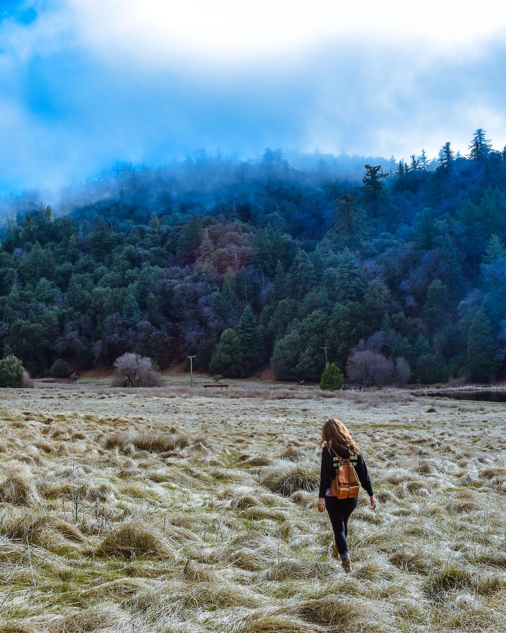 palomar mountain state park california