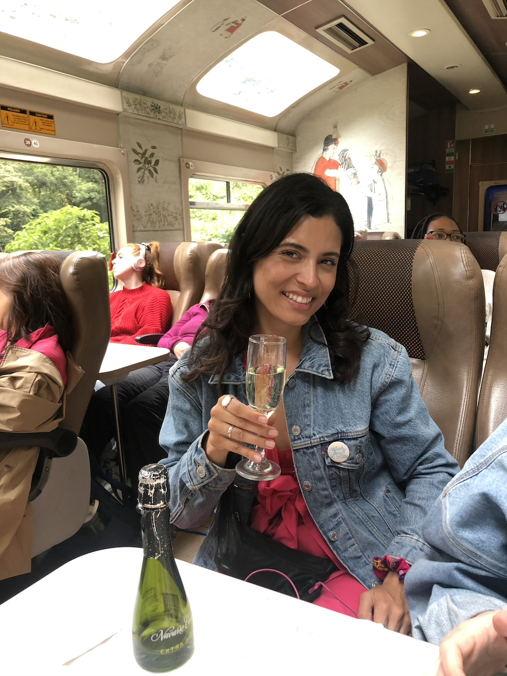 woman drinking sparking wine on machu picchu train