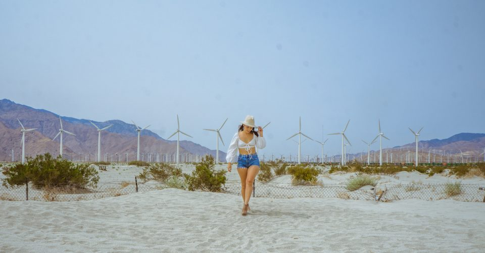 how to get to the palm springs windmills photoshoot