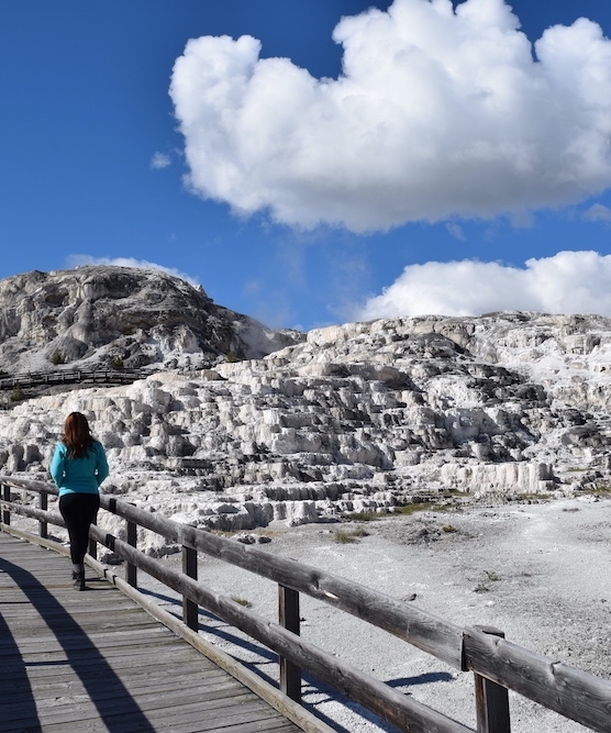 woman in blue jacket at mammoth hot springs at yellowstone national park