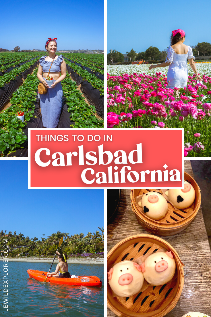 best things to do in carlsbad california collage with woman in strawberry in flower field kaykaing and Japanese character buns