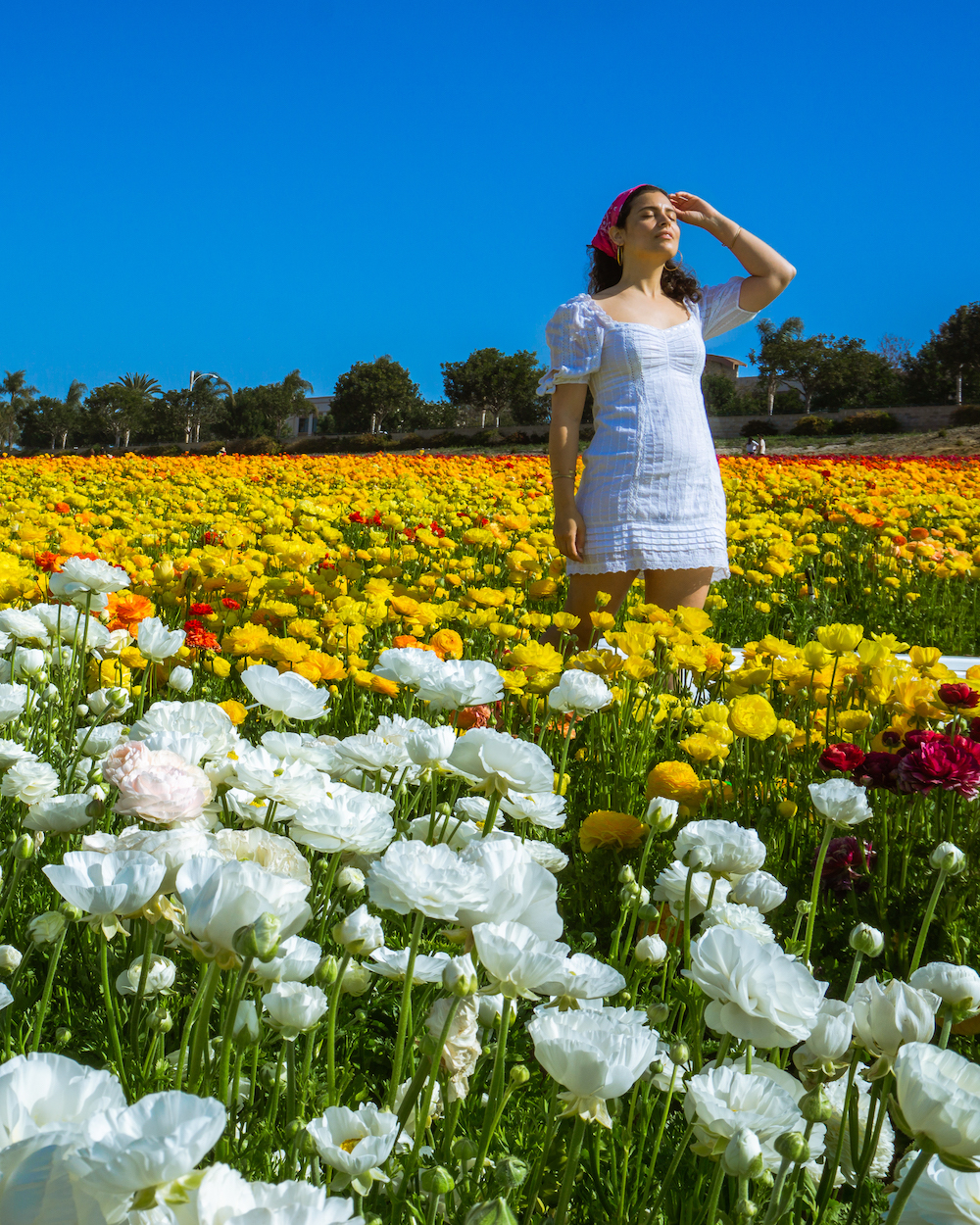 woman at the carlsbad california the flower fields