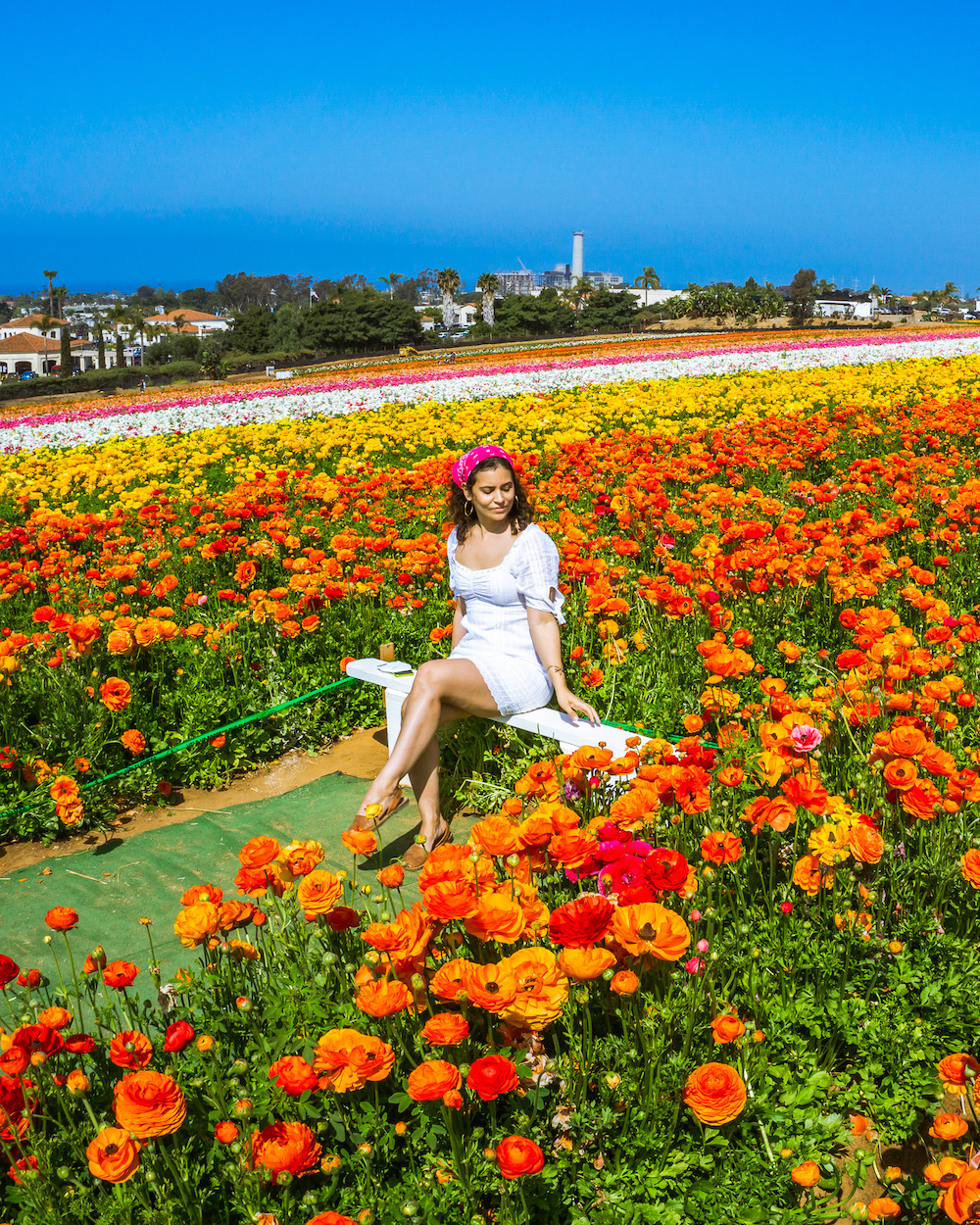 woman in dress at the flower field in carlsbad