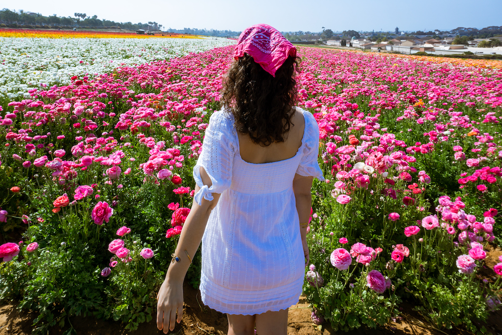 woman in dress at the flower fields carlsbad