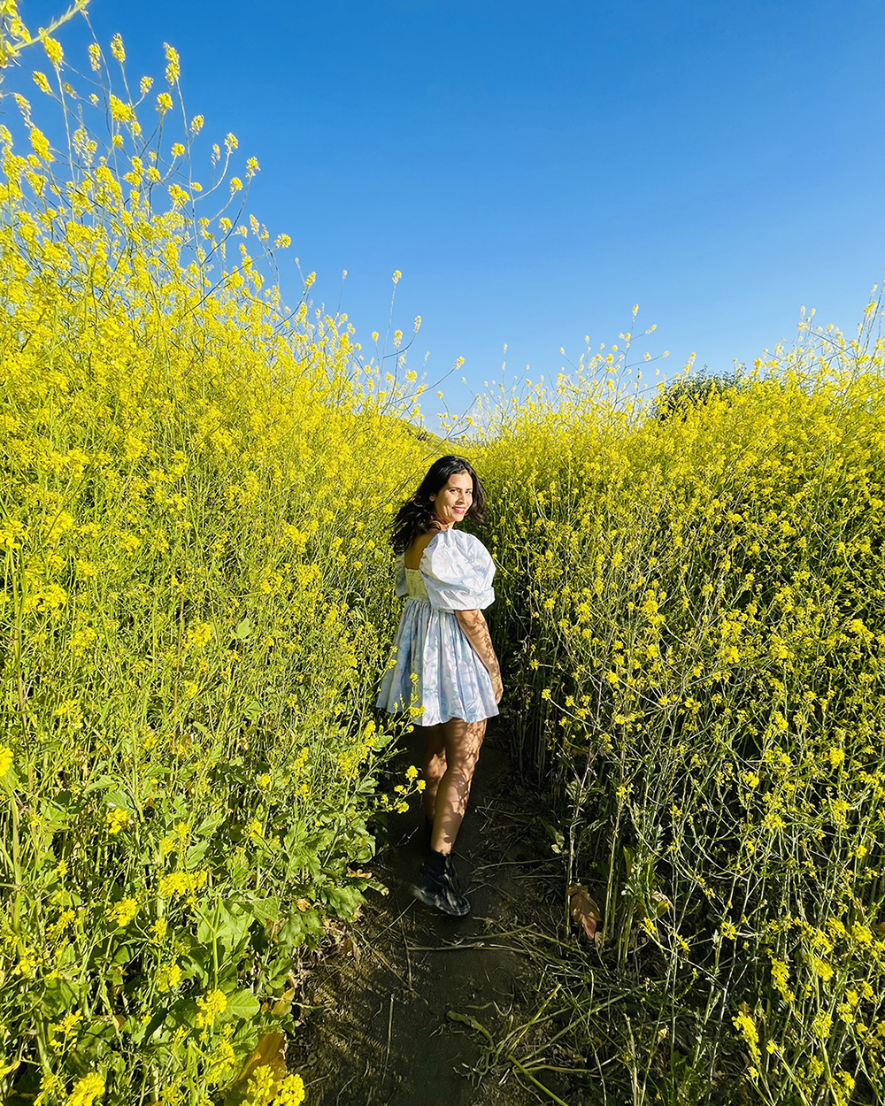 woman hikeing between yellow windflowers at chino hills state park california
