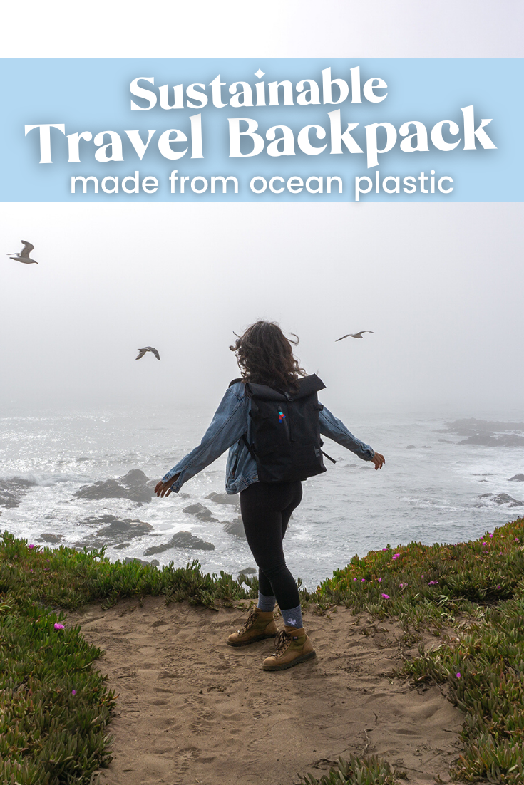 woman wearing a black backpack standing near a cliff overlooking the ocea with birds flying in the distance