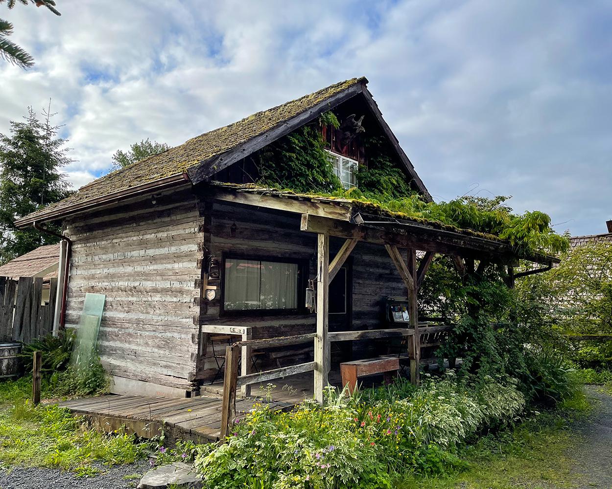 log style cabin at paradise village cabin near mount rainier national park in Ashford washington