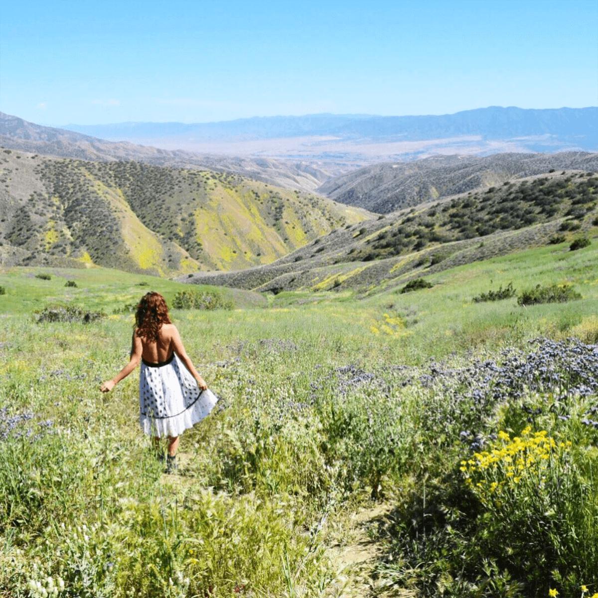 woman at carrizo plain california hills of wildflowers